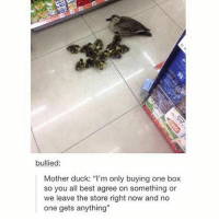 """bullied  Mother duck: """"I'm only buying one bo  so you all best agree on something or  we leave the store right now and no  one gets anything"""" HOLY FUCKING SHIT ITS OFFICIAL SCORCH TRIALS IS MY NEW FAVORITE MOVIE"""