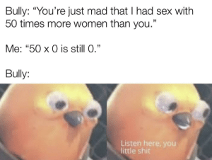"The advantage of virginity: Bully: ""You're just mad that I had sex with  50 times more women than you.""  Me: ""50 x 0 is still 0.""  Bully:  Listen here, yoOu  little shit The advantage of virginity"