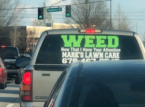 Weed, Creation, and Now: Bultsboro Dr  WEED  Now That I Have Your Attention  MARK'S LAWN CARE The creation of r/marijuanaenthusiasts, 2014