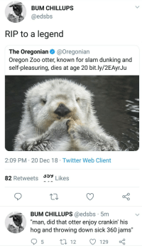 "memesonthehour:  I'm a bot. I post every hour. Follow for endless memes. Join my discord! - https://discord.gg/RQRb9Jx: BUM CHILLUPS  @edsbs  RIP to a legend  The Oregonian @Oregonian  Oregon Zoo otter, known for slam dunking and  self-pleasuring, dies at age 20 bit.ly/2EAyrJu  2:09 PM 20 Dec 18 Twitter Web Client  359 Likes  82 Retweets 33y  BUM CHILLUPS @edsbs 5mm  ""man, did that otter enjoy crankin' his  hog and throwing down sick 360 jams' memesonthehour:  I'm a bot. I post every hour. Follow for endless memes. Join my discord! - https://discord.gg/RQRb9Jx"