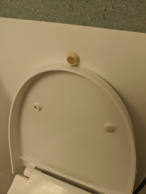 Cruise, The Wall, and Cruise Ship: Bumper stop in our cruise ship bathroom to prevent the lid from crashing into the wall...