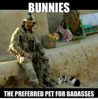Bunnies, Memes, and 🤖: BUNNIES  THE PREFERRED PET FOR BADASSES