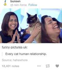 Dank, 🤖, and Cat: bunsen  rain-force Follow  funny-pictures-uk:  Every cat human relationship.  Source: hahawhore  18,401 notes