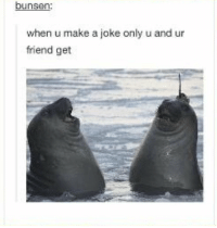 Lol, Memes, and 🤖: bunsen:  when u make a joke only u and ur  friend get LOL BFFS https://t.co/nQ3amElzfD