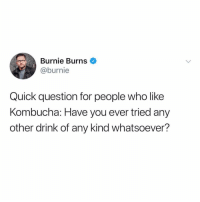 Guys WHAT IS KOMBUCHA: Burnie Burns  @burnie  Quick question for people who like  Kombucha: Have you ever tried any  other drink of any kind whatsoever? Guys WHAT IS KOMBUCHA