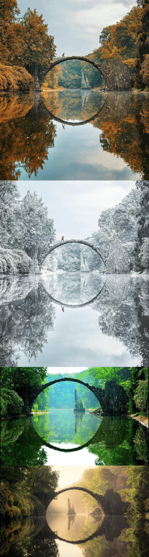 burntcopper: Kromlau bridge, Germany, during all four seasons.: burntcopper: Kromlau bridge, Germany, during all four seasons.