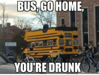 Youre Drunk: BUS GO HOME,  YOU'RE DRUNK