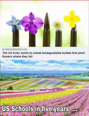 Flowers,flowers everywhere: BUSİNESSINSIDE  The US Army wants to create biodegradable bullets that plant  flowers where they fall  R.COM  US Schools in five years Flowers,flowers everywhere