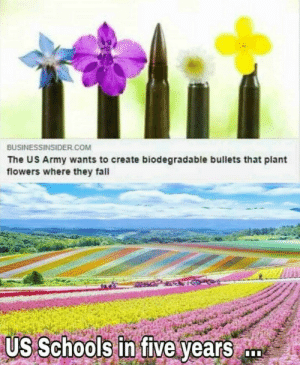Fresh..: BUSINESSINSIDER COM  The US Army wants to create biodegradable bullets that plant  flowers where they fall  Us Schools in five years Fresh..