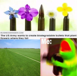 Spread the love: BUSINESSINSIDER COM  The US Army wants to create biodegradable bullets that plant  flowers where they fall  Me Spread the love