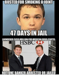 Jail, Memes, and Smh: BUSTED FOR SMOKINGAJOINT  7 DAYSIN JAIL  LAUNDERED S850 MILLION FOR MEXICAN DRUGICARTEL  NOTONE BANKER ARRESTED OR JAILED Smh