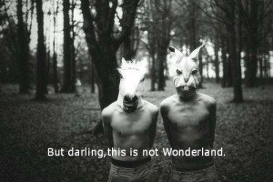 Wonderland, Darling, and This: But darling,this is not Wonderland.