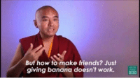 how to make friends: But how to make friends? Just  giving banana doesn't work.  POSE  C333