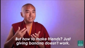 Friends, Work, and Banana: But how to make friends? Just  giving banana doesn't work.  HUFF  POST meirl