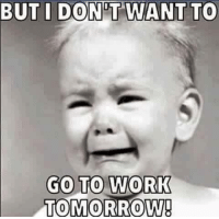 Memes, 🤖, and  Go to Work: BUT I DONT WANT TO  GO TO WORK  TOMORROW!