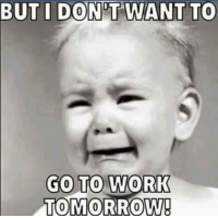 Memes, Work, and Tomorrow: BUT I DON'T WANT TO  GO TO WORK  TOMORROW!