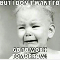 Memes, 🤖, and Noooo: BUT I DONT WANT TO  GO TO WORK  TOMORROW! NOOOO! should b off day, but, I was asked to work....so, imma go 💲🏃💲! MONDAY'S