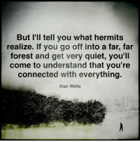 Memes, Connected, and Quiet: But I'll tell you what hermits  realize. If you go off into a far, far  forest and get very quiet, you'll  come to understand that you're  connected with everything.  Alan Watts Expanded Consciousness
