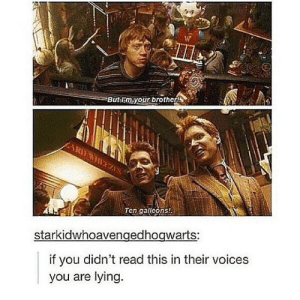 Spot on.: But lim your brother  Ten gallcons  starkidwhoavengedhogwarts:  if you didn't read this in their voices  you are lying Spot on.