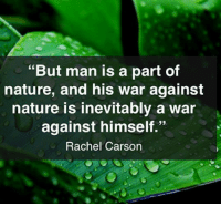 "Memes, 🤖, and Divinity: ""But man is a part of  nature, and his war against  nature is inevitably a war  against himself.""  Rachel Carson ""But man is a part of nature, and his war against nature is inevitably a war against himself."" ― Rachel Carson  Pantheism: Everything is Connected, Everything is Divine  For more information and to sign up for future events visit: www.pantheism.com  Facebook Group: www.facebook.com/groups/pantheism"