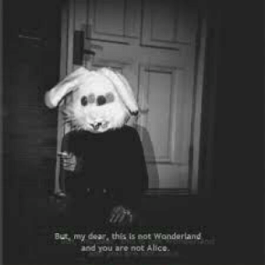 Alice, Wonderland, and You: But my dear, this is not Wonderland  and you are not Alice