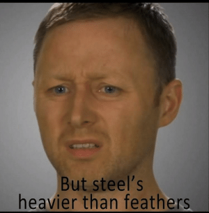 The Wright Brothers present their findings to the aviation community (1903): But steel's  heavier than feathers The Wright Brothers present their findings to the aviation community (1903)