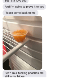 Fucking, Love, and Dank Memes: But T still love you  And I'm going to prove it to you  Please come back to me  See? Your fucking peaches are  still in my fridge ok fine