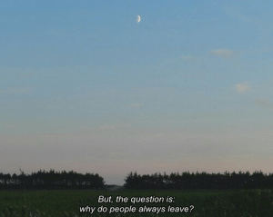 Why, Question, and The Question: But, the question is  why do people always leave?