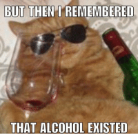 Memes, Alcohol, and 🤖: BUT THEN REMEMBERED  THAT ALCOHOL EXISTED Yess!