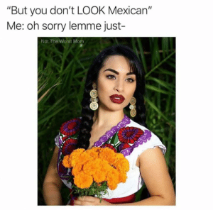 "Memes, Sorry, and The Worst: ""But you don't LOOK Mexican""  Me: oh sorry lemme just-  Not The Worst Mom *stares in spanglish*"