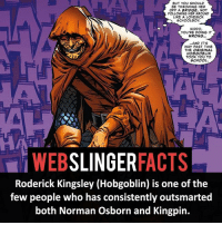 Memes, 🤖, and Xmen: BUT YOU SHOULD  BE THROWING HER  OFF A BRIDGE, NOT  FOLLOWING HER AROUND  LIKE A LOVESICK  SCHOOLBOY.  KIDDO,  YOU'RE DOING IT  WRONG.  AND IT'S  WAY PAST TIME  THE ORIGINAL  HOBGOBLIN  TOOK YOU TO  SCHOOL.  WEB  SLINGER  FACTS  Roderick Kingsley (Hobgoblin) is one of the  few people who has consistently outsmarted  both Norman Osborn and Kingpin. ▲▲ - HobGoblin or Green Goblin?! - My other IG accounts @factsofflash @yourpoketrivia @facts_of_heroes ⠀⠀⠀⠀⠀⠀⠀⠀⠀⠀⠀⠀⠀⠀⠀⠀⠀⠀⠀⠀⠀⠀⠀⠀⠀⠀⠀⠀⠀⠀⠀⠀⠀⠀⠀⠀ ⠀⠀----------------------- spiderman peterparker tomholland marvelfacts spidermanfacts webslingerfacts venom carnage avengers xmen justiceleague marvel homecoming tobeymaguire andrewgarfield ironman spiderman2099 civilwar auntmay like gwenstacy maryjane deadpool miguelohara hobgoblin milesmorales like4like