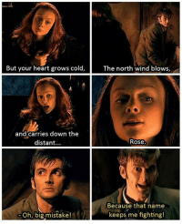 Memes, Heart, and Rose: But your heart grows cold,  The north wind blows,  and carries down the  distant...  Rose.  Because that name  keeps me fighting!  Oh, big mistake! mattsmith doctorwho eleven tardis fezesarecool DW bowtiesarecool drwho davidtennant Christophereccleston petercapaldi ten twelve nine