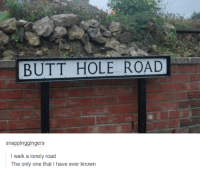 Dank, 🤖, and Hole: BUTT HOLE ROAD  snappinggingers  I walk a lonely road  The only one that I have ever known