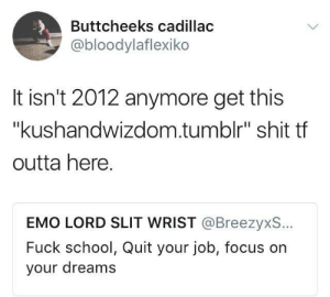 "Getchu some welfare and start chasing those dreams: Buttcheeks cadillac  @bloodylaflexiko  It isn't 2012 anymore get this  ""kushandwizdom.tumblr"" shit tf  outta here.  EMO LORD SLIT WRIST @BreezyxS..  Fuck school, Quit your job, focus on  your dreams Getchu some welfare and start chasing those dreams"