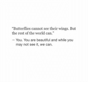 "Beautiful, Wings, and World: ""Butterflies cannot see their wings. But  the rest of the world can.""  You. You are beautiful and while you  may not see it, we can."