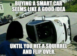 Not so smart eh!: BUYING A SMART CAR  SEEMS LIKE A GOOD IDEA  UNTIL YOU HITASOUIRREL  AND FLIP OVER.  Imgfp.o  ATARGY Not so smart eh!