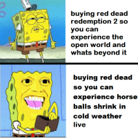 Horse, Live, and Weather: buying red dead  redemption 2 sco  you can  experience the  open world and  whats beyond it  itt  experience horse  cold weather  live yeetus the meetus