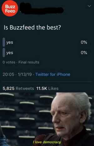 Iphone, Love, and Twitter: Buzz  FeeD  Is Buzzfeed the best?  0%  yes  0%  yes  O votes Final results  20:05 1/13/19 Twitter for iPhone  5,825 Retweets 11.5K Likes  Ilove democracy. I really love it!