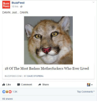 Buzzfeed, Badass, and Com: BuzzFeed  Buzz  FeeD  10 hrs  DAMN. Just... DAMN.  18 Of The Most Badass Motherfuckers Who Ever Lived  BUZZFEED COM I BY DAVE STOPERA  I Like -Comment Share  1.3  Top Comments  96 shares https://t.co/QSVm3uMdtM