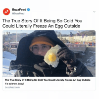 True, Buzzfeed, and Link: BuzzFeed  @BuzzFeed  The True Story Of It Being So Cold You  Could Literally Freeze An Egg Outside  The True Story Of It Being So Cold You Could Literally Freeze An Egg Outside  It's science, baby!  buzzfeed.com Don't believe us? Link in bio.🍳❄