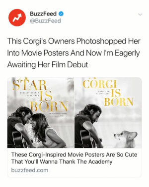 Corgi, Cute, and Academy: BuzzFeed  @BuzzFeed  This Corgi's Owners Photoshopped Her  Into Movie Posters And Now I'm Eagerly  Awaiting Her Film Debut  CORGI  IS  BORN  BORN  IN THEATERS OCTOBER  These Corgi-Inspired Movie Posters Are So Cute  That You'll Wanna Thank The Academy  buzzfeed.com When is she getting her award. See all of her posters in the link in bio.