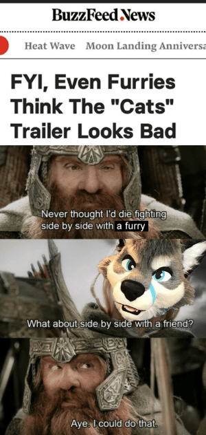 "Bad, Cats, and Fire: BuzzFeed News  Moon Landing Anniversa  Heat Wave  FYI, Even Furries  Think The ""Cats""  Trailer Looks Bad  Never thought l'd die fighting  side by side with a furry  What about side by side with a friend?  Aye I could do that Cast it into the fire!"