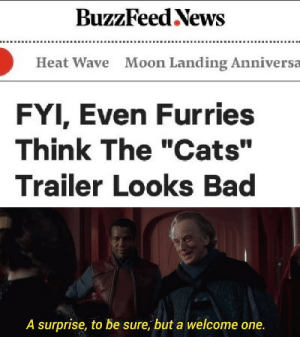 "Bad, Cats, and News: BuzzFeed News  Moon Landing Anniversa  Heat Wave  FYI, Even Furries  Think The ""Cats""  Trailer Looks Bad  A surprise, to be sure, but a welcome one. Well we need the allies"