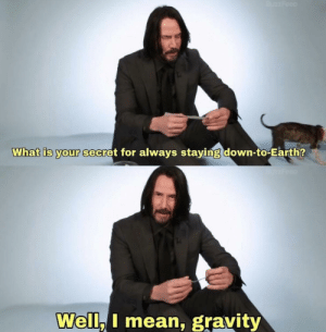 Makes sense: BuzzFeed  What is your secret for always staying down-to-Earth?  Brzfeen  Well, I mean, gravity Makes sense