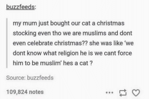 Christmas, Muslim, and Religion: buzzfeeds:  my mum just bought our cat a christmas  stocking even tho we are muslims and dont  even celebrate christmas?? she was like 'we  dont know what religion he is we cant force  him to be muslim' hes a cat?  Source: buzzfeeds  109,824 notes Christmas Stockings for the cat