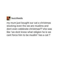 Muslim, Pizza, and Buzzfeed: buzzfeeds  my mum just bought our cat a christmas  stocking even tho we are muslims and  dont even celebrate christmas?? she was  like 'we dont know what religion he is we  cant force him to be muslim' hes a cat my pizza socks are so cool