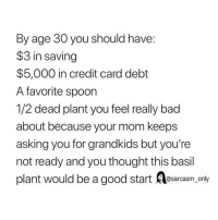 (Via twitter-katebrauning): By age 30 you should have:  $3 in saving  $5,000 in credit card debt  A favorite spoon  1/2 dead plant you feel really bad  about because your mom keeps  asking you for grandkids but you're  not ready and you thought this basil  plant would be a good start asarcasm only (Via twitter-katebrauning)