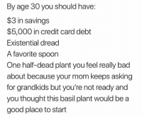 Bad, Good, and Dank Memes: By age 30 you should have:  $3 in savings  $5,000 in credit card debt  Existential dread  A favorite spoon  One half-dead plant you feel really bad  about because your mom keeps asking  for grandkids but you're not ready and  you thought this basil plant would be a  good place to start Gamers rise up