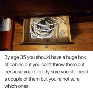 Box, Them, and Huge: By age 35 you should have a huge box  of cables but you can't throw them out  because you're pretty sure you still need  a couple of them but you're not sure  which ones Im not ashamed ..