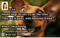 https://t.co/10Xpqi2EB2 by @ash_like_whoa #FactCheckASong https://t.co/fWJUVrHyZH: by Ash  Hound dogs do not cry a the time.  They are a quiet, well-behaved breed  FactCheck ASong  E ashleyev Joke Blogger.com  D ash like whoa https://t.co/10Xpqi2EB2 by @ash_like_whoa #FactCheckASong https://t.co/fWJUVrHyZH